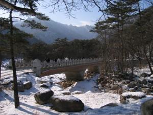 KOREA 029